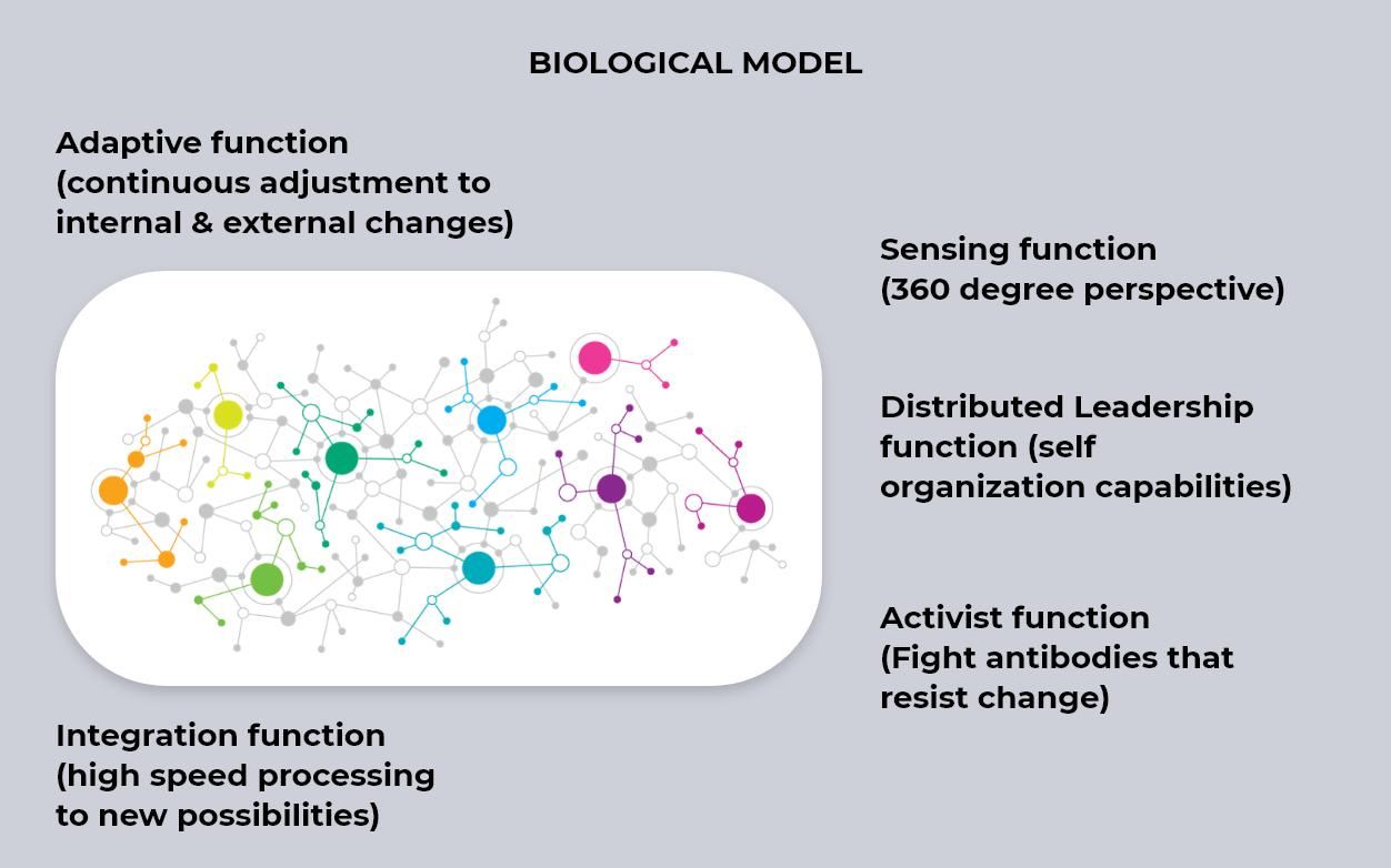 BiologicalModel